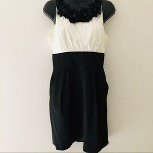 Pencil Skirt Dress Black and White Size 12